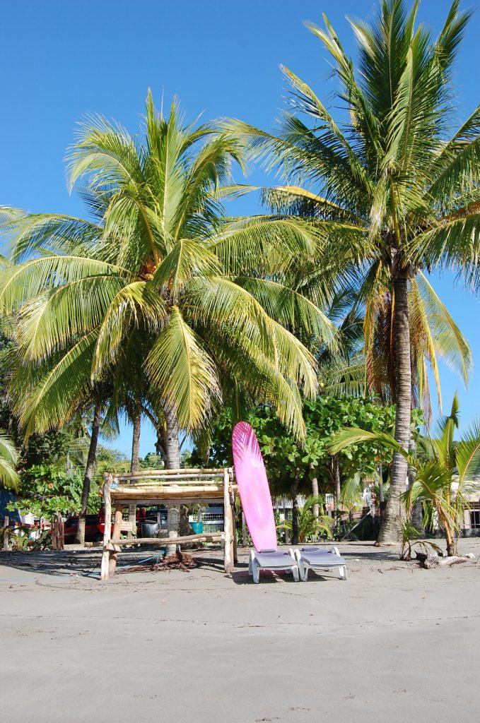 Surf Board and Palm Tree on Playa Samara