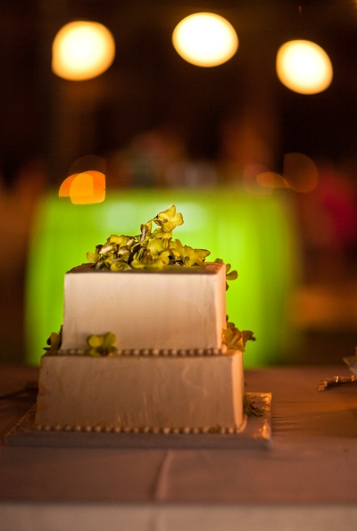 Tropical Wedding Cake Costa Rica Wedding
